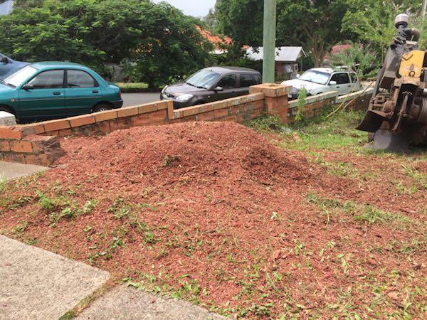 Brisbane stump